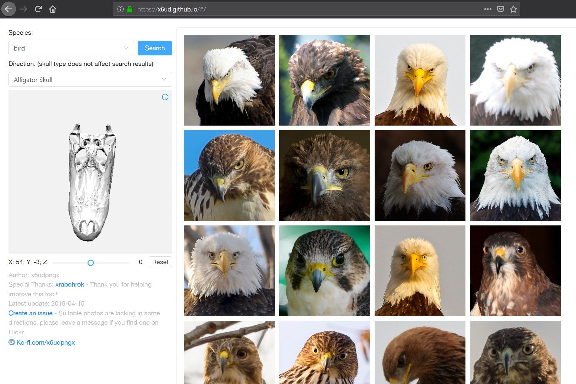 referencia visual para desenhar animais